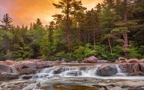 Картинка лес, камни, фото, водопад