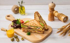 Картинка колоски, помидор, оливки, соус, сэндвич, салат