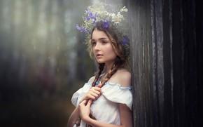 Картинка девочка, венок, косы, Наталья Остапенко