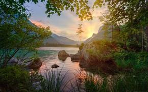 Картинка лес, лето, трава, свет, закат, горы, ветки, озеро, отражение, камни, скалы, холмы, берег, листва, Германия, …