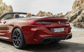 Картинка BMW, кабриолет, задняя часть, 2019, BMW M8, M8, F91, M8 Competition Convertible, M8 Convertible