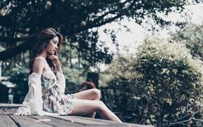 Картинка девушка, природа, лицо, модель