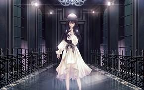 Картинка девушка, замок, окна, аниме, арт, вампир, hongsung0819