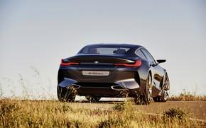 Картинка небо, трава, купе, BMW, сзади, 2017, 8-Series Concept
