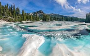 Картинка зима, лес, снег, горы, лёд, Орегон, панорама, замёрзшее озеро