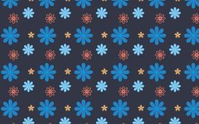Картинка цветы, фон, синий фон