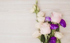 Картинка цветы, розы, букет, pink, flowers, purple, roses, эустома, eustoma