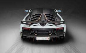 Картинка Lamborghini, суперкар, вид сзади, 2018, Aventador, Aventador SVJ, SVJ 63