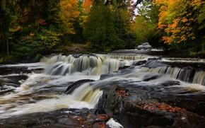Картинка осень, лес, река, водопад, Мичиган, каскад, Michigan, Bond Falls, Ontonagon River, Река Онтонагон, Водопады Бонд, …