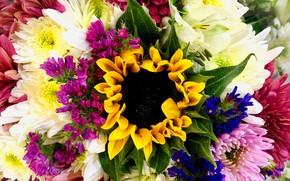 Картинка цветы, букет, сакро