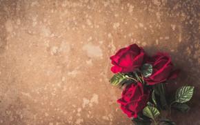 Картинка цветы, розы, букет, красные, red, бутоны, flowers, romantic, roses, bud
