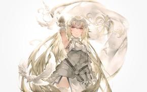 Картинка девушка, голуби, Fate / Grand Order, рулер