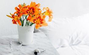 Картинка Orange, Flower, Morning, Vase, Lilium