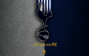 Картинка wallpaper, sport, logo, football, English Premier League, Tottenham Hotspur