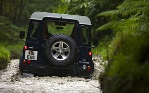 Картинка сзади, Land Rover, Defender, 2013, Defender 90
