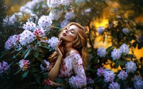 Картинка девушка, цветы, природа, поза, волосы, портрет, сад, платье, красивая, Melanie Dietze