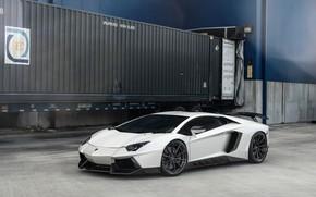 Картинка Lamborghini, Italy, White, Aventador, VAG, Sight