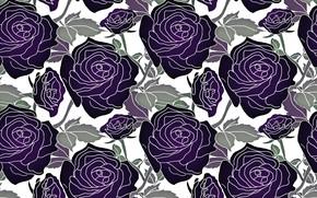 Картинка белый, листья, цветы, фон, узор, розы, вектор