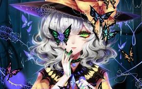 Картинка взгляд, девушка, бабочки, шляпа, арт, Touhou, Тохо, Тоухоу, Sheya
