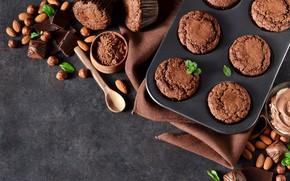 Картинка орехи, кексы, шоколадные, Evgeny Karandaev