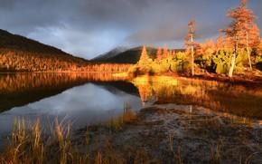 Картинка осень, пейзаж, природа, туман, озеро, рассвет, холмы, утро, леса, сопки, Колыма, Максим Евдокимов, озеро Джека …
