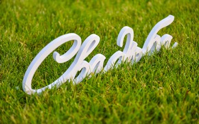 Картинка трава, свадьба, деревянные слова