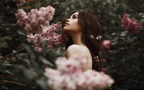 Картинка взгляд, поза, Девушка, прическа, цветочки, плечо, Александр Сасин, Анастасия Шиканова