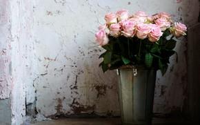 Картинка розы, букет, ведро