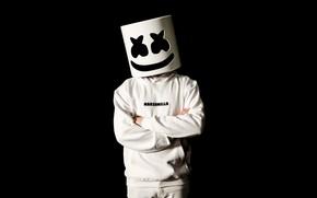 Картинка человек, маска, диджей, маршмэллоу, Marshmello