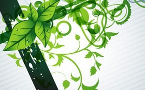 Картинка цветы, зеленый, фон, green, текстура, background, Modern, floral