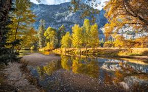 Картинка осень, деревья, пейзаж, горы, природа, река, США, Йосемити, национальный парк, заповедник, Yosemite National Park, Merced …
