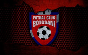 Картинка wallpaper, sport, logo, football, Botosani