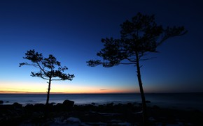 Картинка море, небо, деревья, закат, камни, побережье, горизонт, силуэты