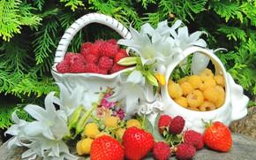 Картинка ягоды, малина, лилии, натюрморт