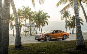 Картинка машина, пляж, пальмы, купе, Bentley, Continental, GT V8