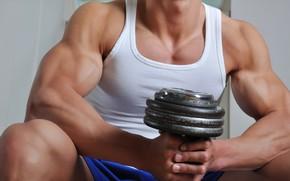 Картинка поза, muscle, мышцы, pose, гантели, бицепс, бодибилдер, dumbbells, bodybuilder, гантель