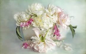 Картинка листья, цветы, фон, букет, лепестки, арт, горшок, розовые, белые, ящик, живопись, пионы, разбитое сердце, дицентра