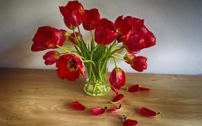 Картинка букет, лепестки, тюльпаны, ваза