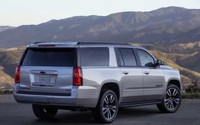 Картинка серый, Chevrolet, сзади, сбоку, SUV, Suburban, 2019