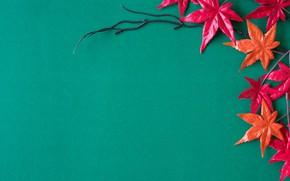Картинка red, фон, leaves, autumn, листья, клен, background, осень, maple