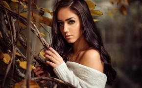 Картинка взгляд, листья, ветки, поза, модель, портрет, макияж, прическа, шатенка, красотка, в белом, боке, Andreas-Joachim Lins, …
