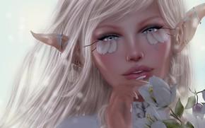 Картинка девушка, цветы, эльф, уши
