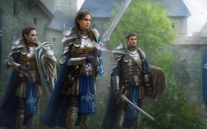 Картинка девушка, доспехи, парни, рыцари