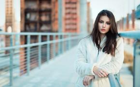 Картинка девушка, волосы, вгляд, боке