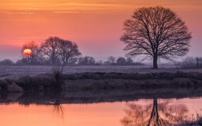 Картинка закат, река, дерево, вечер