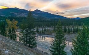 Картинка пейзаж, горы, природа, река, ландшафт, красота, ели, ёлки