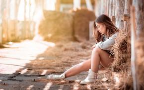 Картинка девушка, свет, поза, сено, ножки, Денис Третьяков