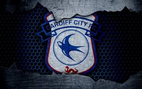 Картинка wallpaper, sport, logo, football, Cardiff City
