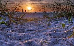 Картинка песок, море, закат, берег
