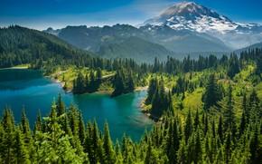 Картинка лес, деревья, горы, озеро, Mount Rainier, Каскадные горы, Eunice Lake, Washington State, Cascade Range, Штат …
